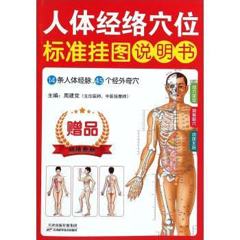 人体经络穴位标准挂图-(共3张.赠说明书)