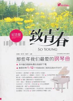 致青春-那些年我们琴曲-纪念版
